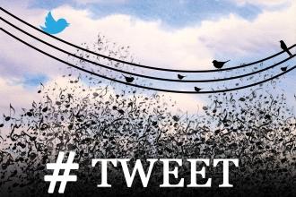 #tweet concert image